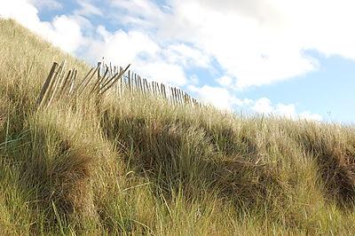 Durham og Lindisfarne 2008 087