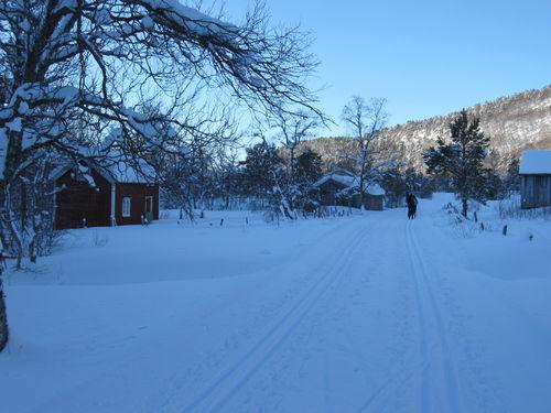 Aure vinterferien 2009 014