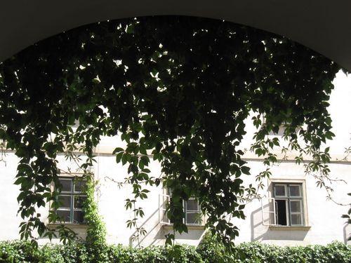 Østerrike juni 2009 140