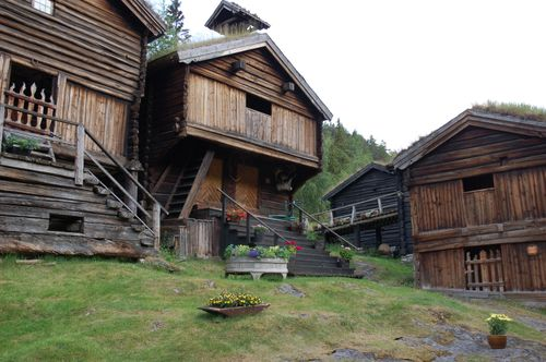 Røisheim 2009 020