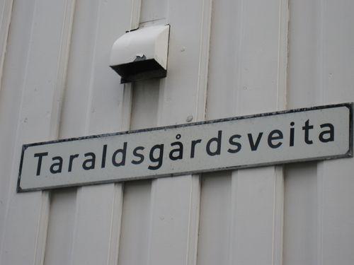Trondheim 022