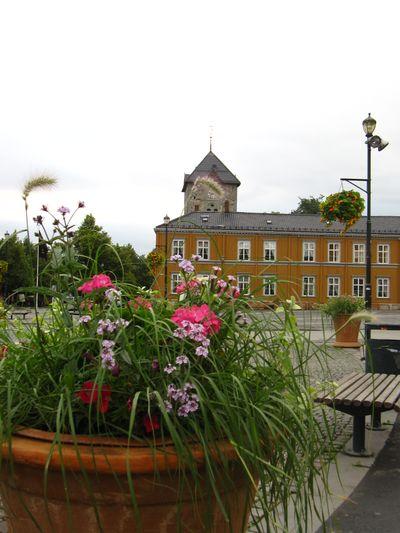 Trondheim 437