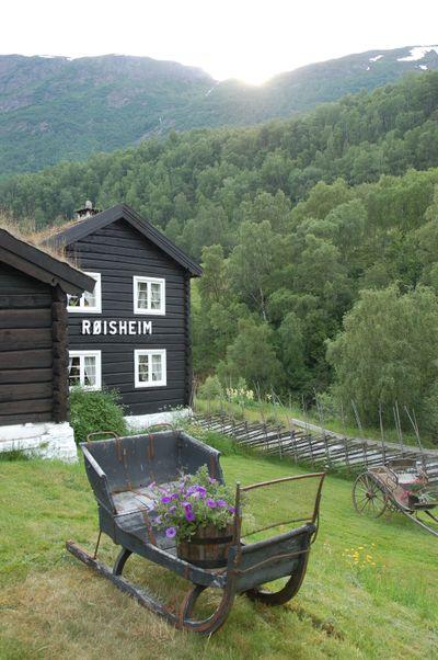 Røisheim 2009 011