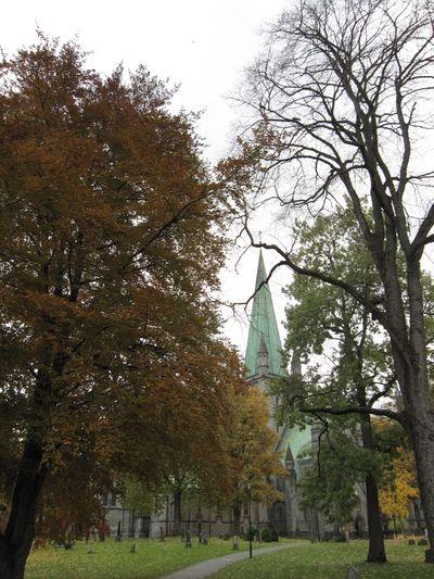 Høst 2009 201