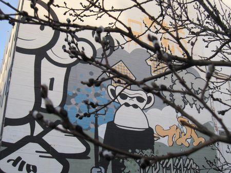 Island januar 2010 008