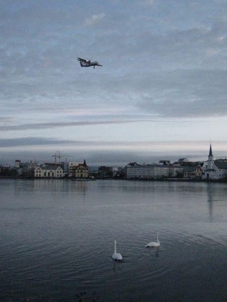 Island januar 2010 149