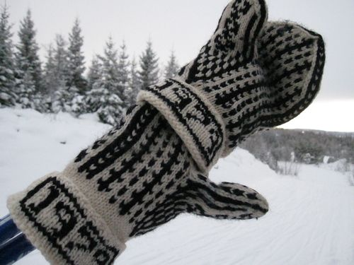 Vinter 2010 006
