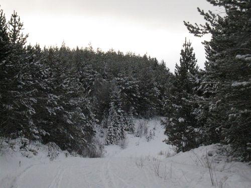 Vinter 2010 003