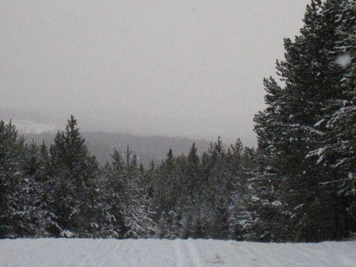 Vinter 2010 009