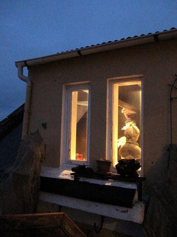 Island januar 2010 033