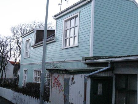 Island januar 2010 127