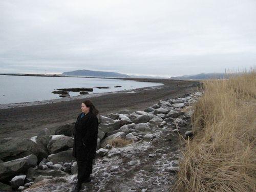 Island januar 2010 277
