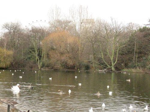 London februar 2010 130
