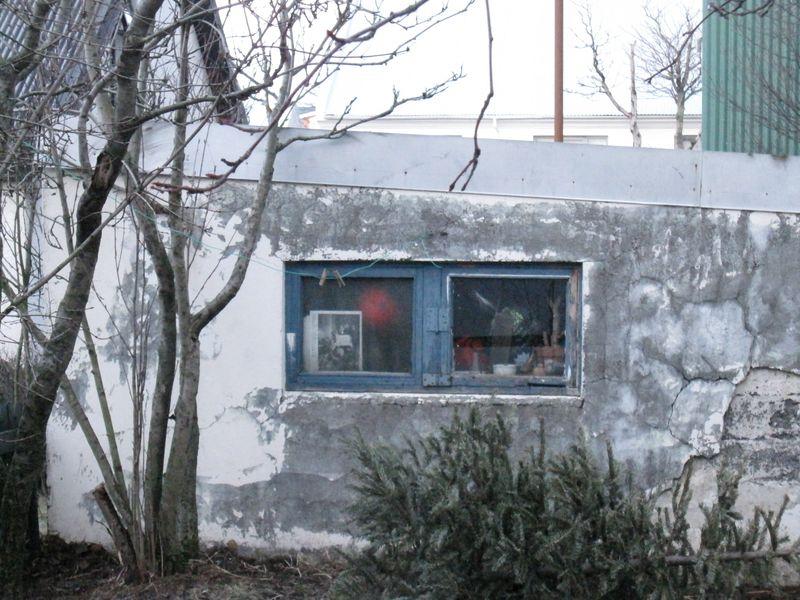 Island januar 2010 132