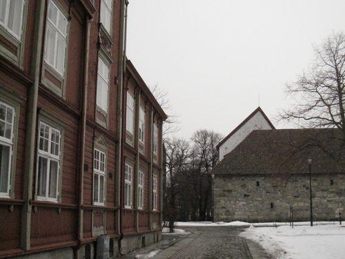 Mars 2010 212
