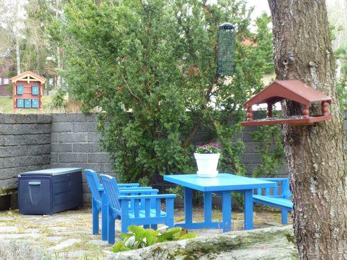 Blue Garden 262