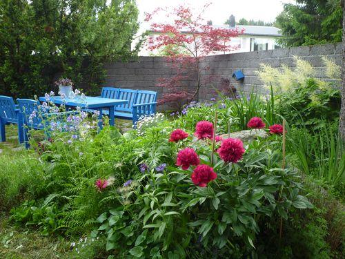Blue Garden 320