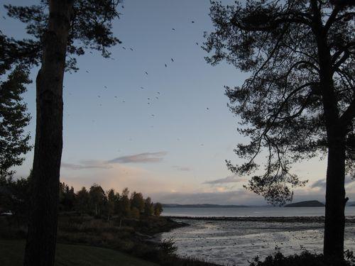Høst 2009 092