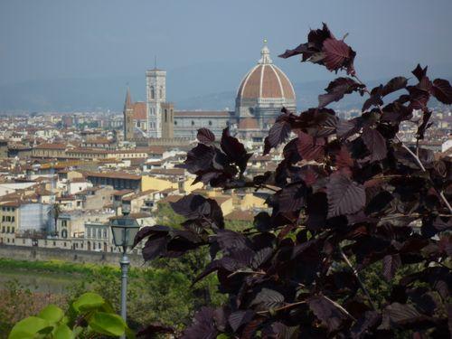 Firenze 012