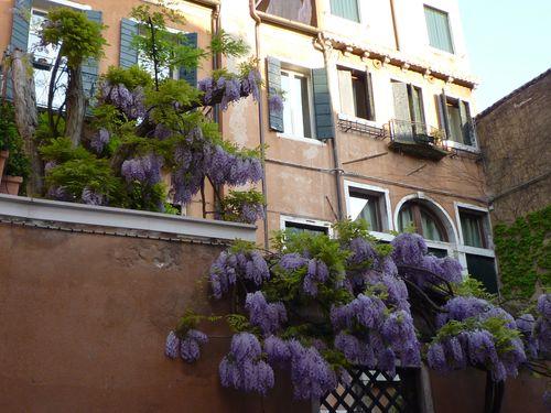 Venezia 1 023