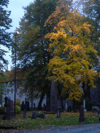 Oktober 2010 006