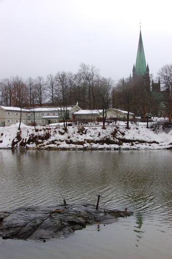 Vinter 2010 2011 030