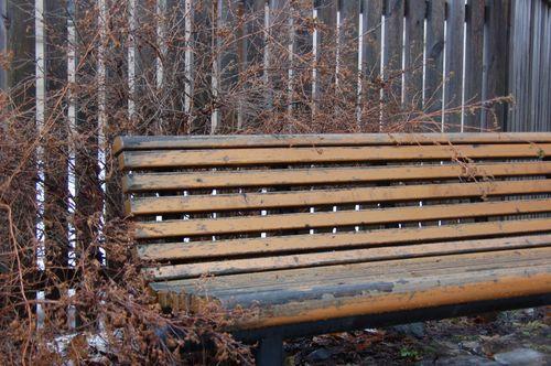 Vinter 2010 2011 045