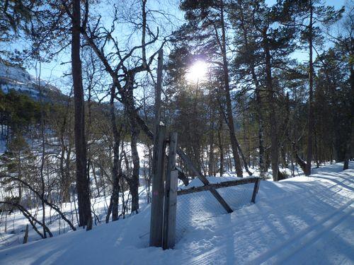 Februar 2011 169