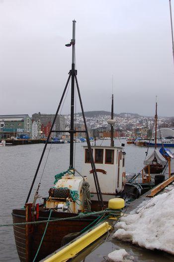 Vinter 2010 2011 014