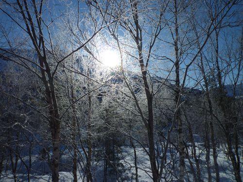 Februar 2011 154