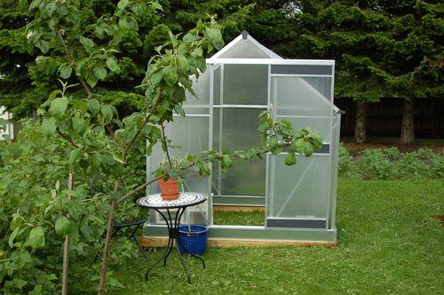 Blue Garden 2011 069