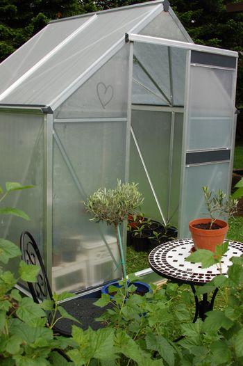 Blue Garden 2011 066