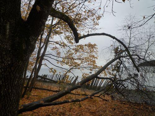 Oktober 2010 004