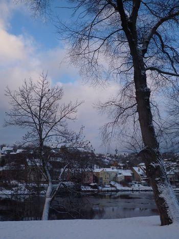 Trondheim 002