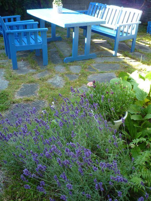 Blue Garden 001