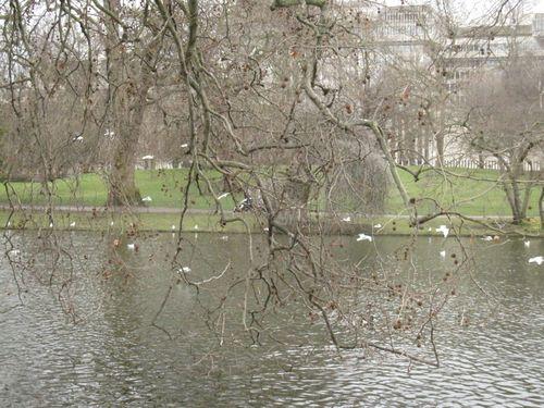 London februar 2010 123