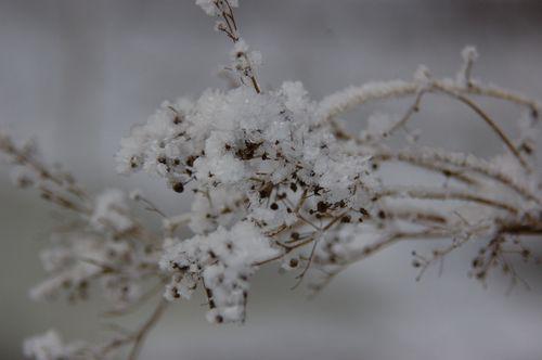 Vinter 2010 2011 044