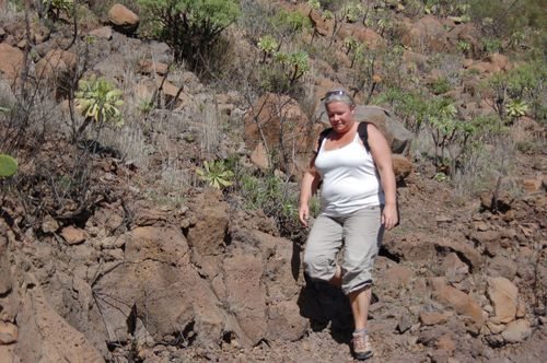 Tenerife jan 2011 045