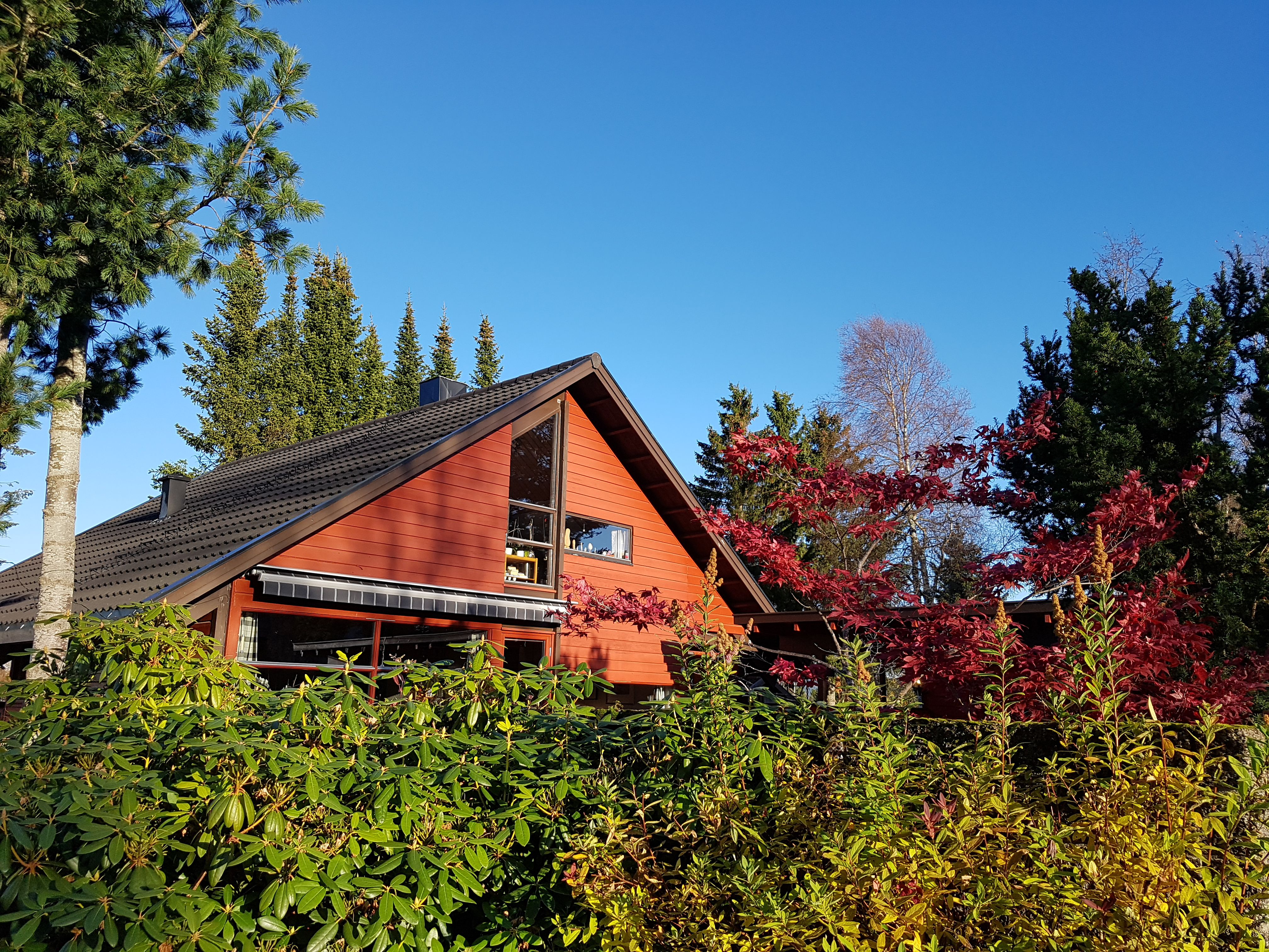 Autumn work at the cottage in October 2