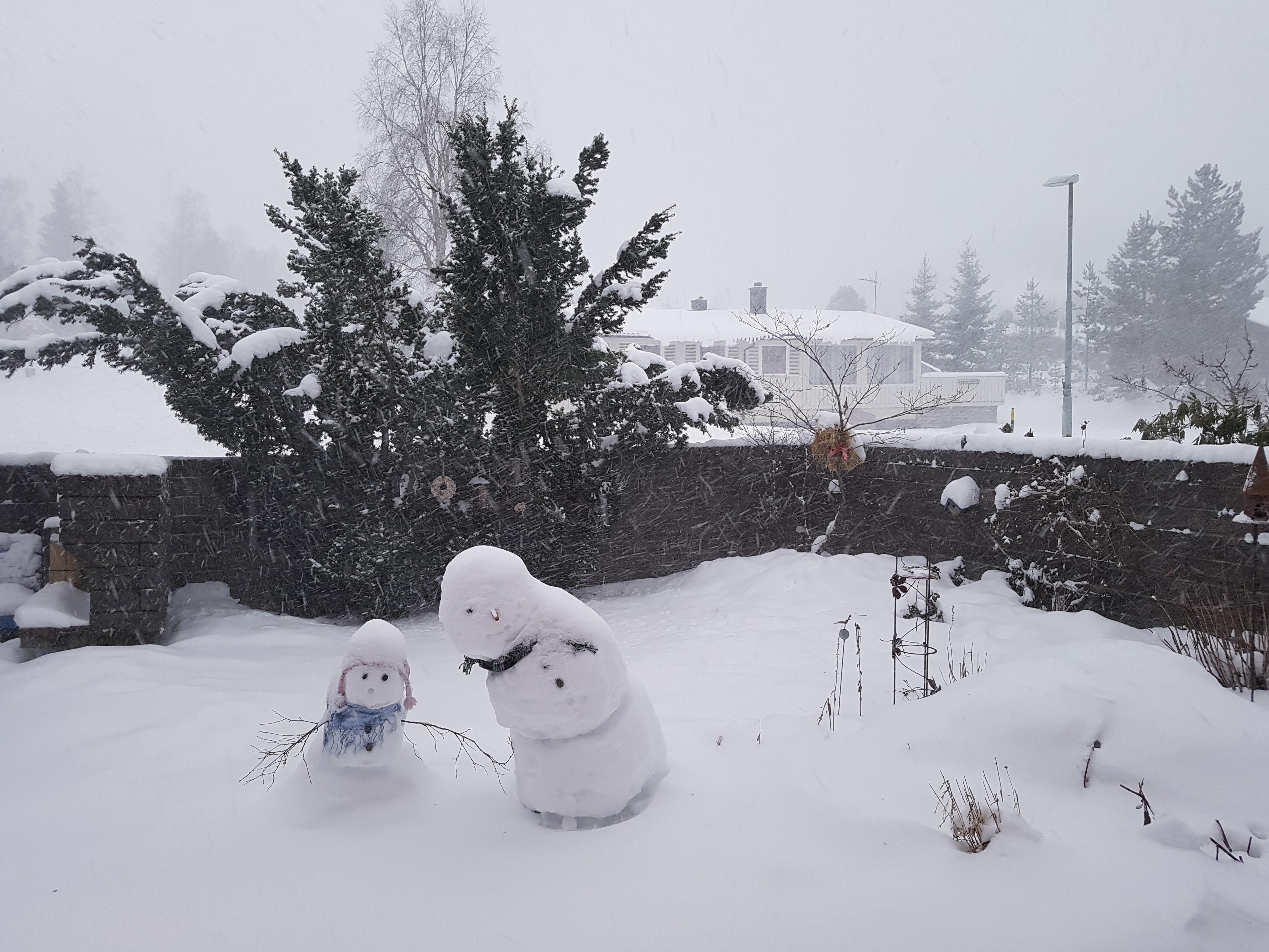 Britt-Arnhild\'s House in the Woods: Winter weather