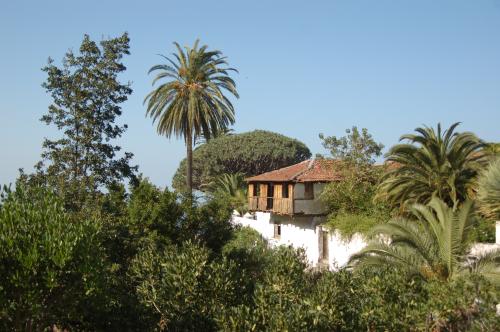 Tenerife jan 2011 031