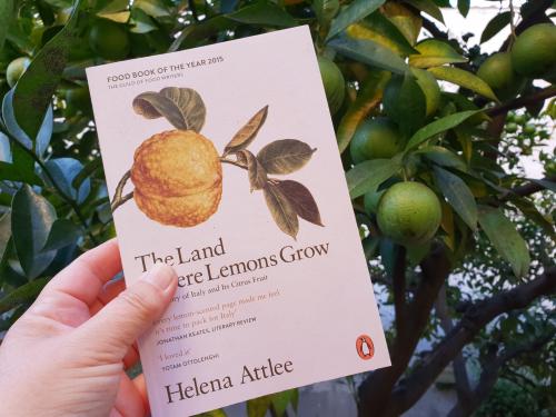The Land Where Lemon Growes