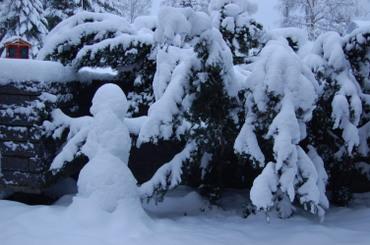 Snowy_snowman