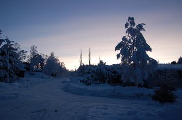 Blog_januar_2008_110