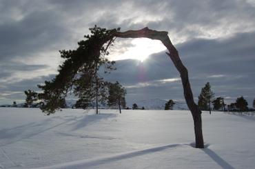 Aure_vinterferien_2007_008