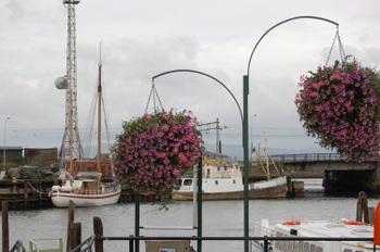 Near_fishmarket